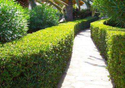realizzazione-giardini---giardinaggio---Green-Sea-Srl--Sardegna-Sassari-Olbia.jpg-potatura-siepe-2