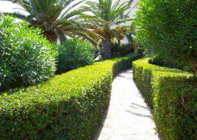realizzazione-giardini---giardinaggio---Green-Sea-Srl--Sardegna-Sassari-Olbia.jpg-potatura-siepe
